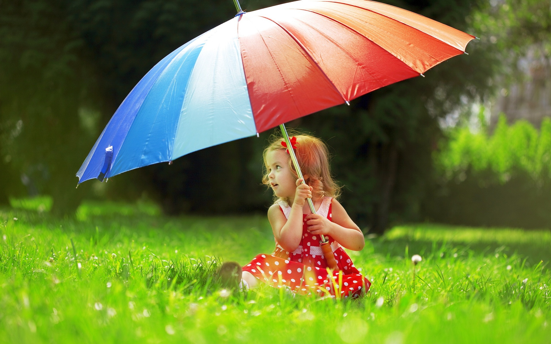 Beautiful Cute Baby Girl With Umbrella Hd Wallpaper