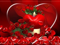 beautiful-love-red-heart-free-hd-wallpaper