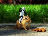 Robot-and-Squirel-Funny-HD-Wallpaper-free-for-desktop