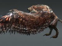 The-Witcher-3-Wild-Hunt-Griffin-Artwork-free-hd-wallpapers