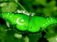 pakistan-best-wallpapers-hd-free-for-you
