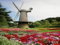 flower-garden-mill-free-hd-wallpapers