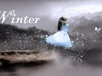 Winter Season Beautiful HD Wallpapers Free
