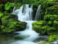 Waterfall-wallpapers-free-hd-for-desktop