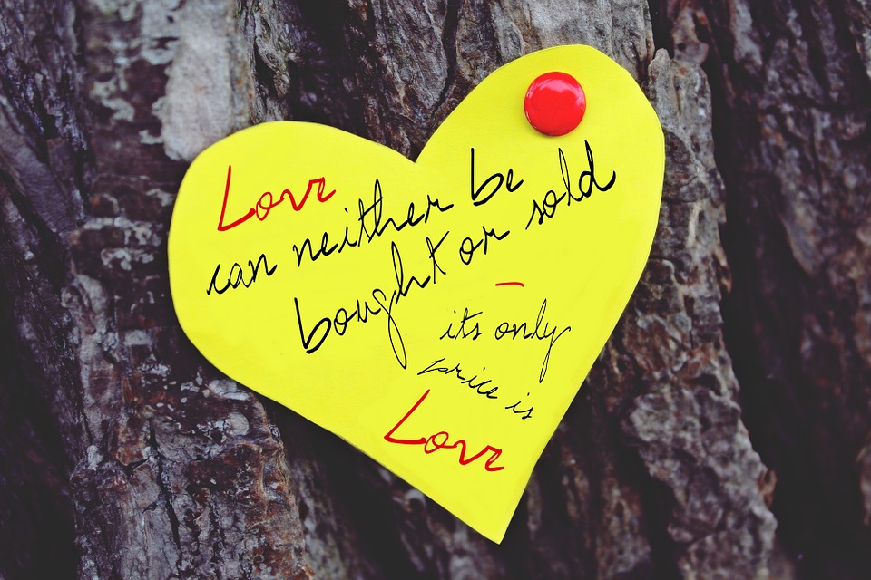 beautiful love quotes hd wallpapers pc