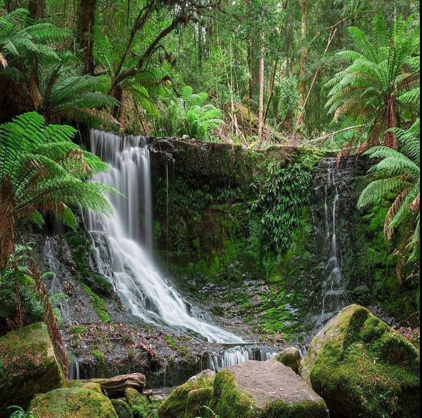 Tropical Waterfall images