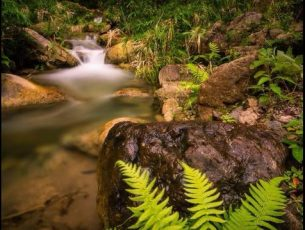 Tropical Waterfall Wallpapers Free Download HD
