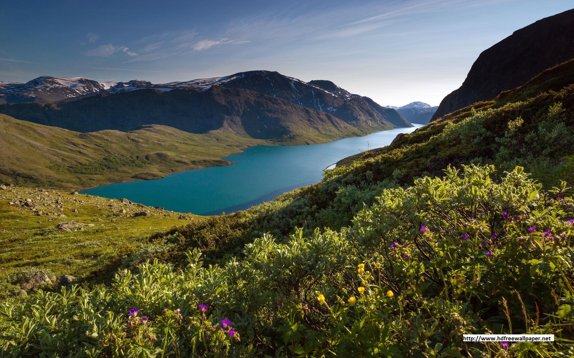 Latest Beautiful Nature HD Wallpapers