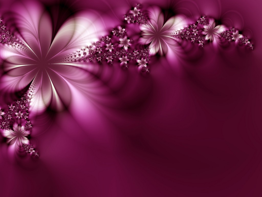 beautiful flowers wallpaper free download for pc - hd wallpaper