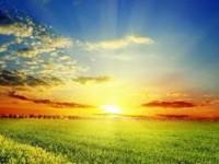 sunny-green-hd-free-best-wallpaper-spring-season