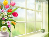 Window-roses-hd-free-spring-season-wallpapers
