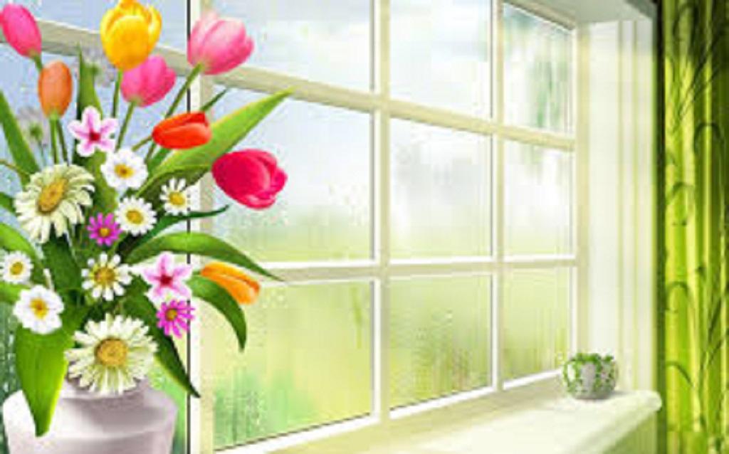 Window-roses-hd-free-spring-season-wallpapers