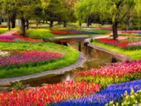 Beautiful-spring-season-hd-most-beautiful-wallpaper-free
