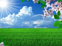 So-beautiful-hd-wallpaper-free-spring-season