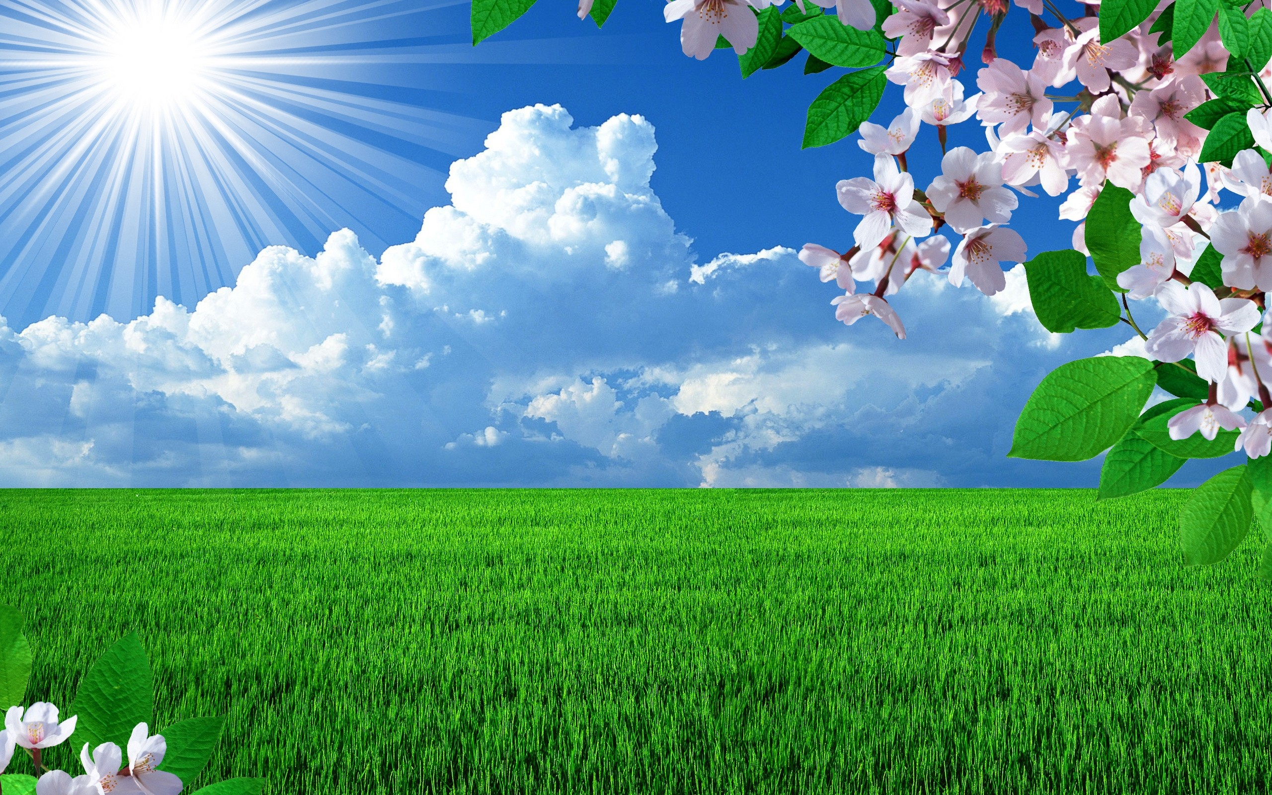 So Beautiful Hd Wallpaper Free Spring Season