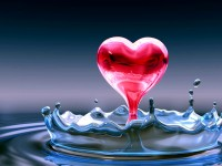 Beautiful Lovely Red Heart Wallpapers Images Free Download