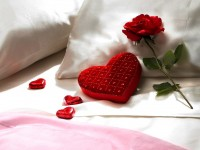 Red-roses-on-white-Pillow-hd-free-wallpaper