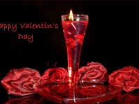 Valentines Day HD Wallpaper Free Images and Background