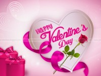 free-top-wallpaper-pink-heart-hd-wallpapers-on-valentines day