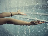 rain drops hd wallpapers free