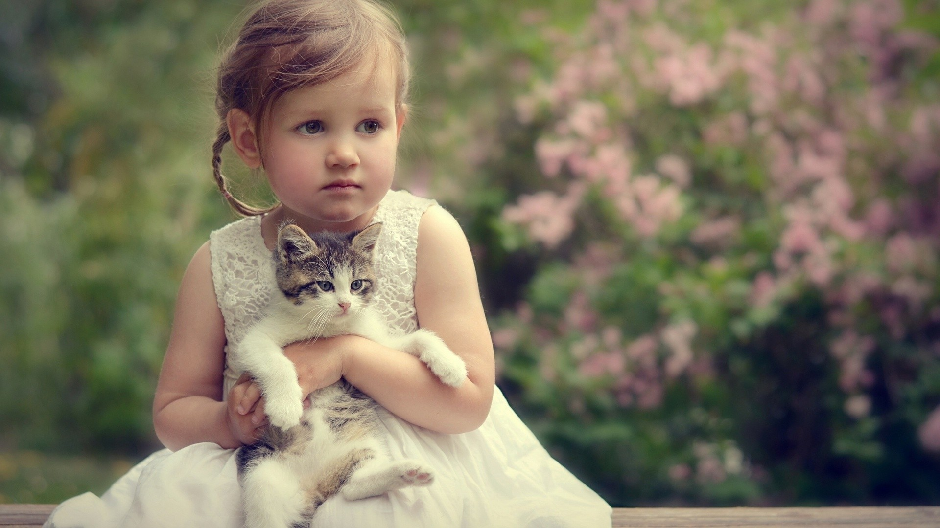 Animals Hd Wallpapers 2015 Funny Kissing Hugging Baby: Sweet-doll-girl-with-cati-free-hd-wallpaer