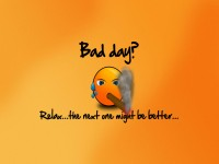 Funny Wallpapers bad day funny advice-free-hd-wallpapers