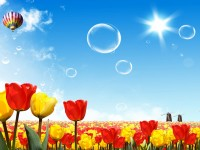 amazing-red-yellow-summer-seasons-wallpapers-hd-free