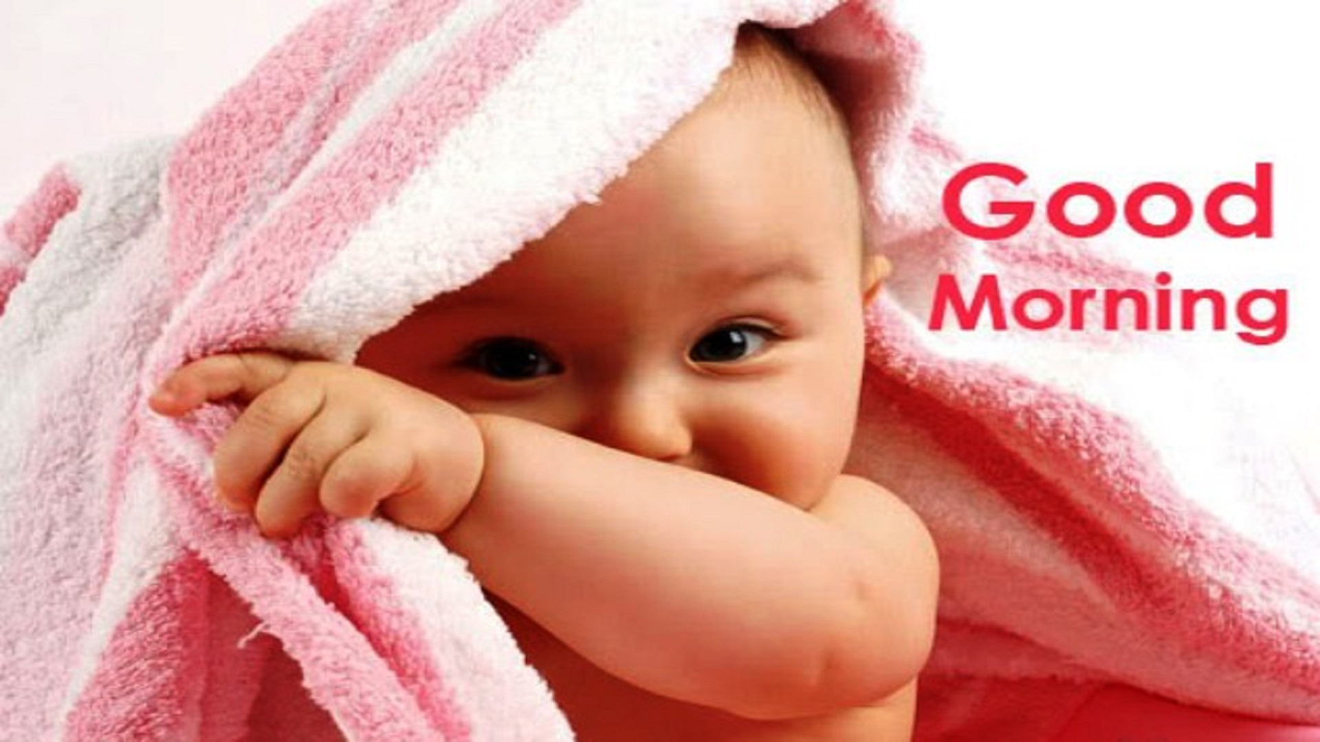 Baby Saying Hd Good Morning Wallpapers Images Free