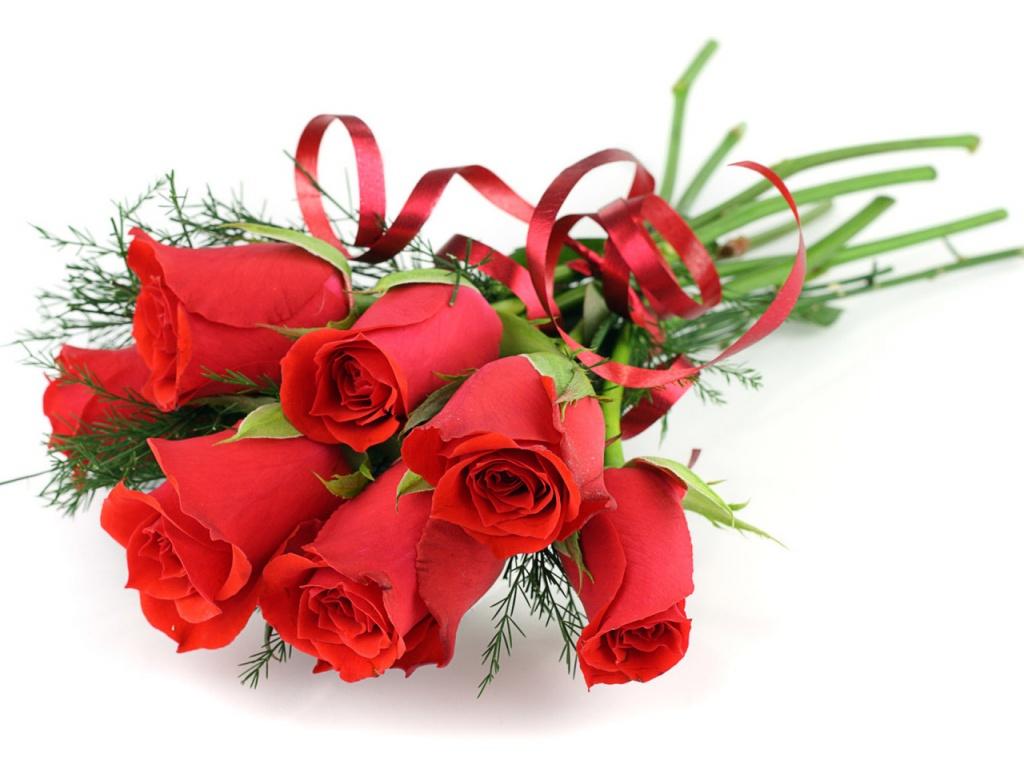 best-rose-wallpapers-free-hd-beautiful