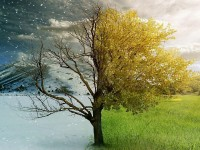 half-winter-half-summer-season-hd-free-wallpaper-download