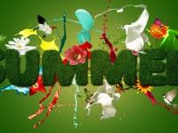 hd-wallpapers-free-summer-season-for-desktops