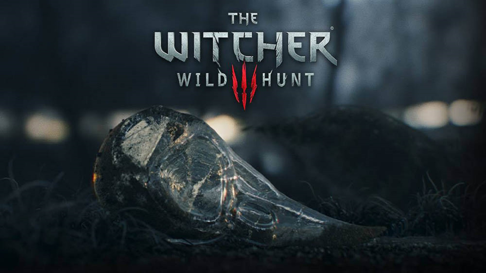 nice-top-games-witcher-wild-hunt-hd-free-wallpapers