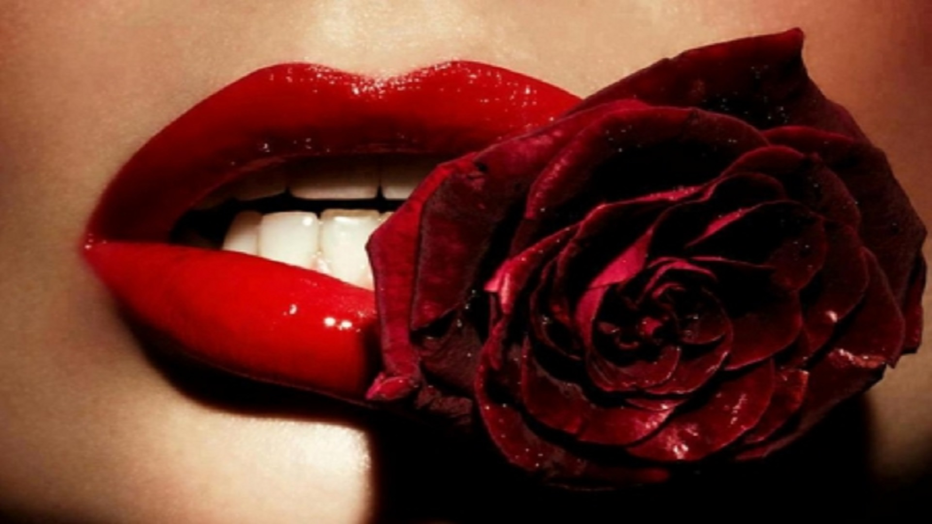 red-rose-in-lips-free-wallpapers-hd