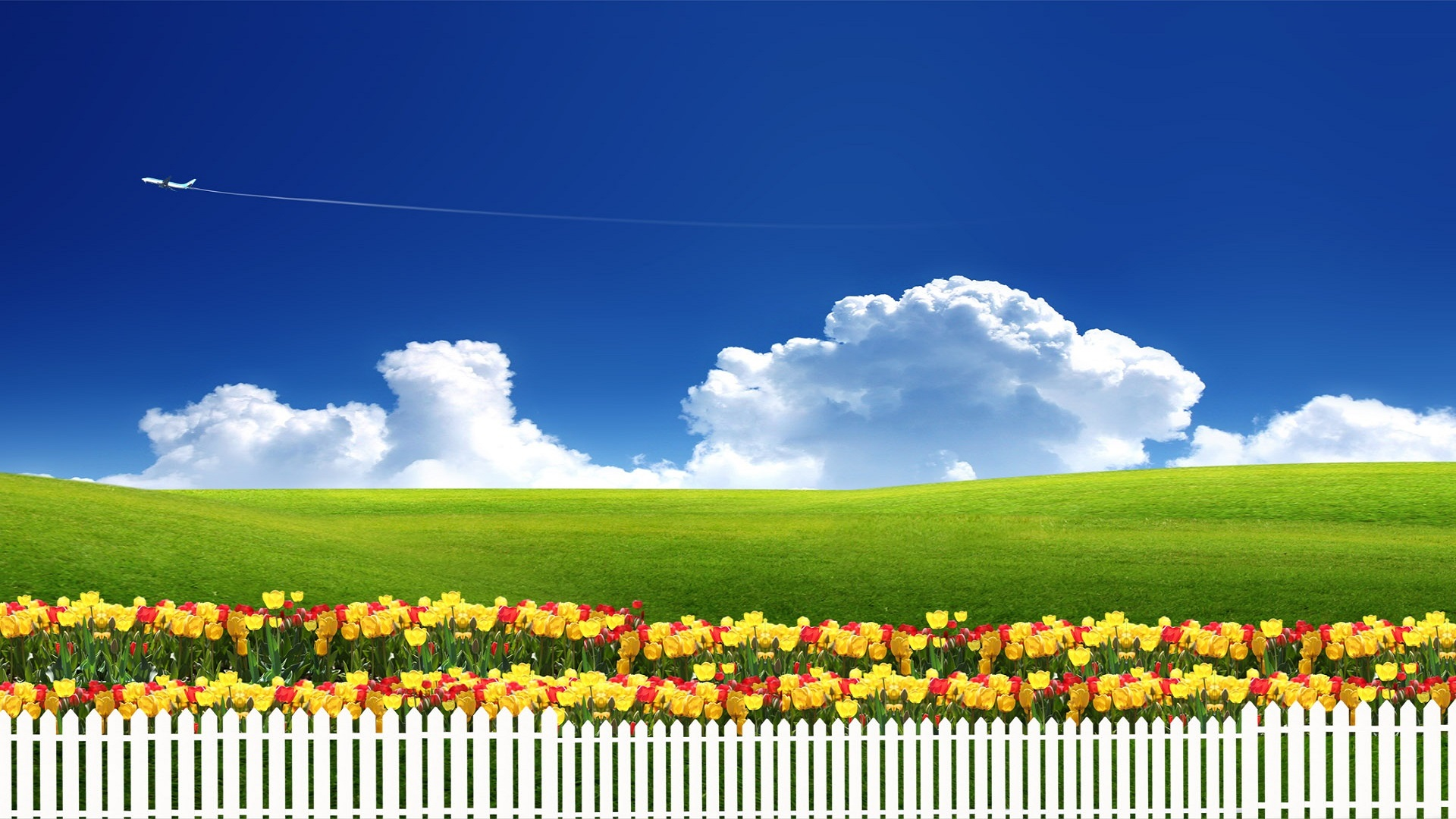 summerseasonhdfreewallpapersfordownloaded hd wallpaper