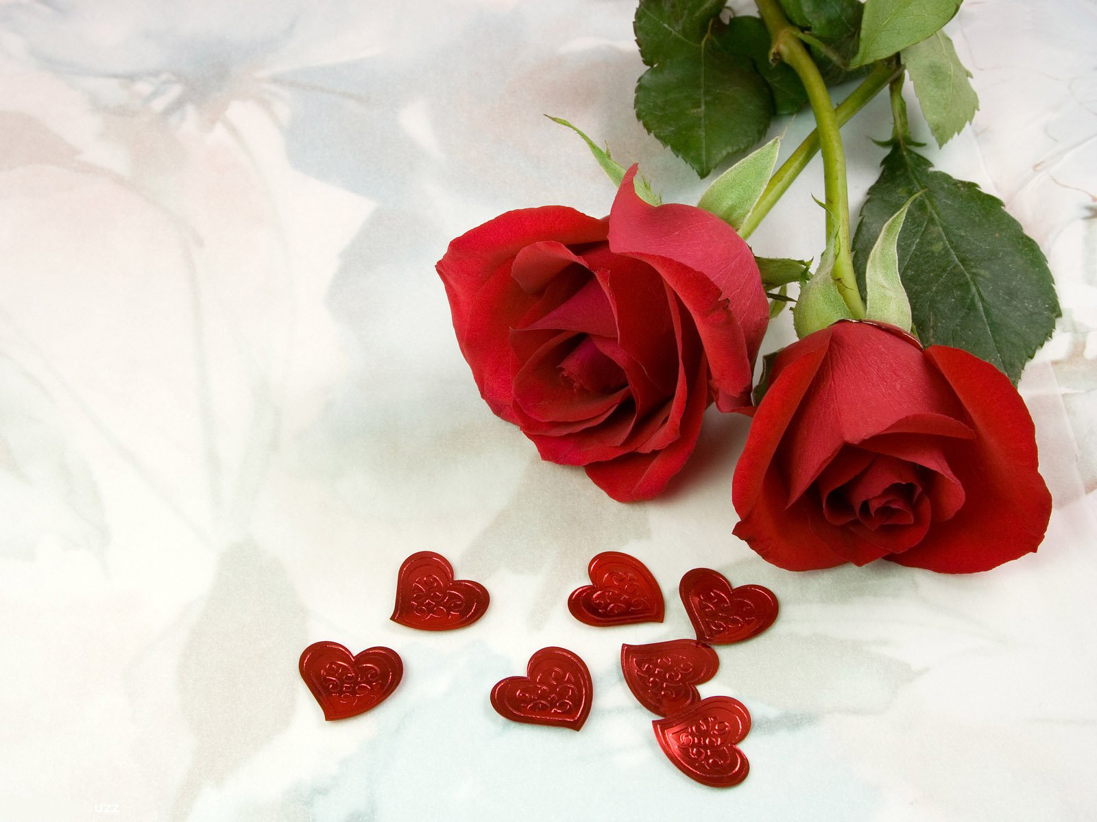 top-red-roses-for-lover-wallpapers-free-hd