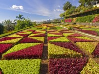 5-garden-portugal_free-hd-wallpapers