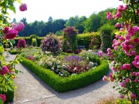5-nature-landscapes_other_flower-garden-free-hd-wallpapers