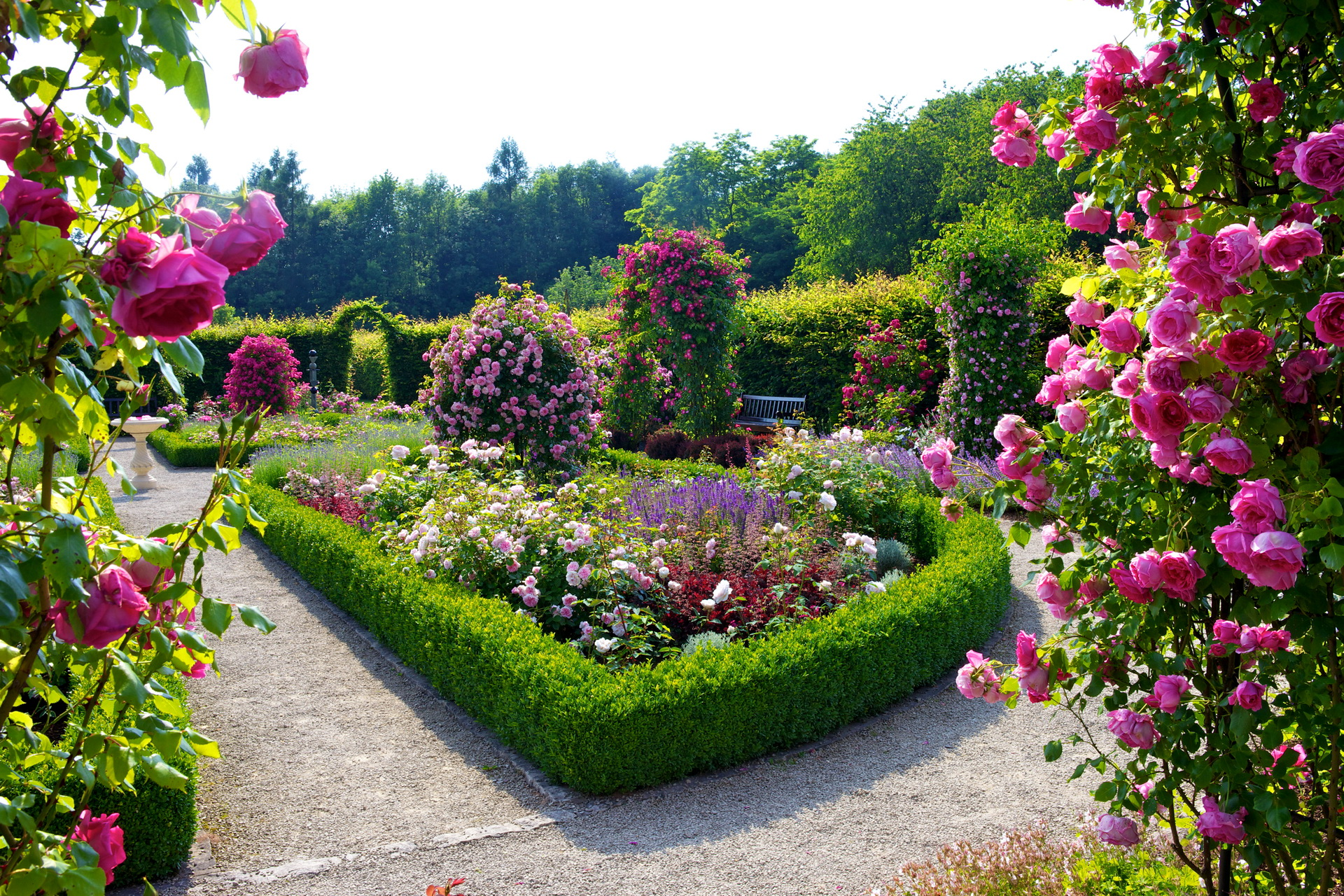 5 Nature Landscapes_other_flower Garden Free Hd Wallpapers