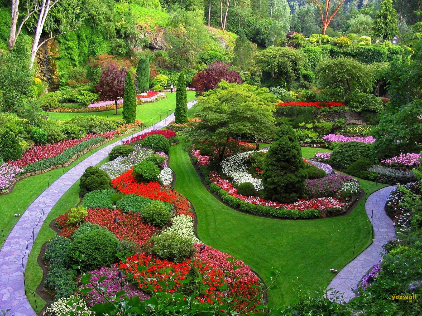 Beautiful Flower Park Wallpaper Hd Free For Desktop Hd Wallpaper
