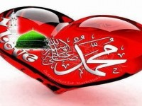 Name Of Muhammad صلى الله عليه وسلم  HD Wallpapers Free