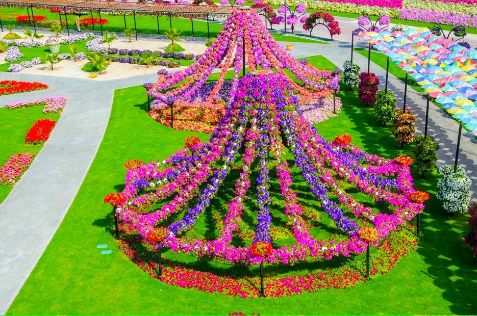 Dubai Miracle Garden Free Hd Wallpapers For Desktop Hd Wallpaper