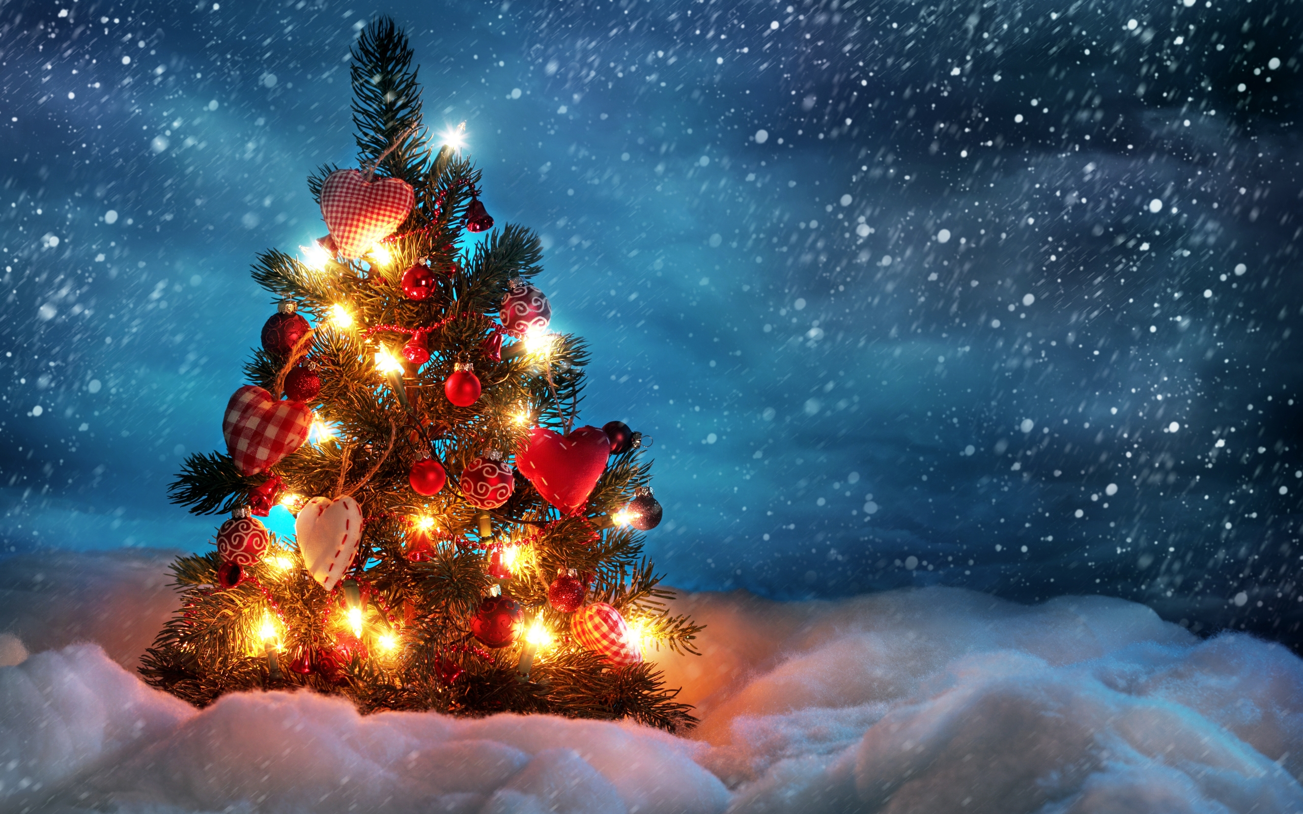 beautiful_christmas_tree-wide-free-hd-wallpapers
