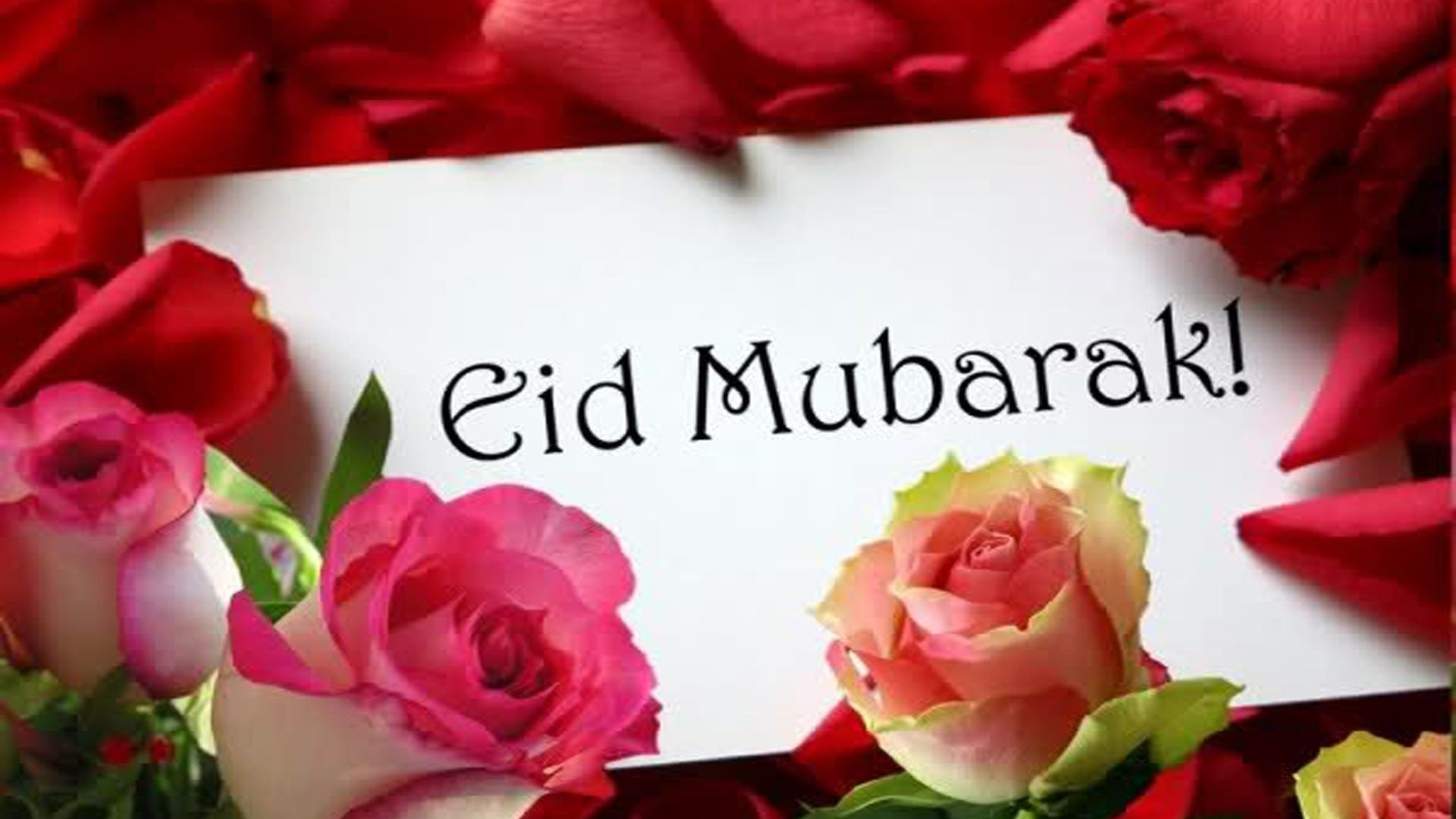 Eid mubarak cards in roses free hd wallpapers hd wallpaper eid mubarak cards in roses free hd wallpapers m4hsunfo