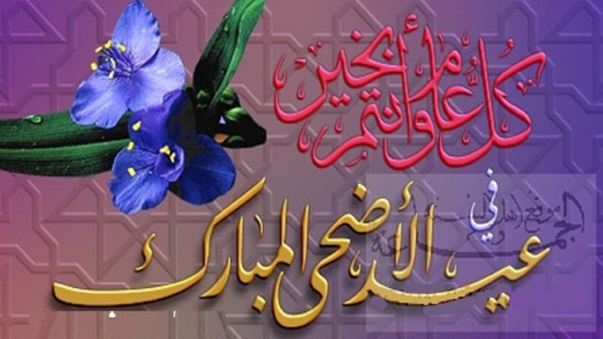 Eid Ul Adha Arabic Free Hd Wallpapers Hd Wallpaper