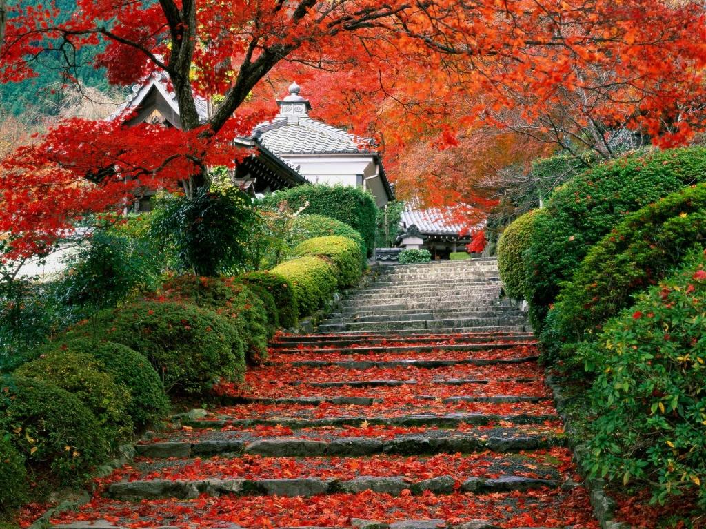 Flower Gardens Wallpaper Wxomqten Free Hd Wallpapers