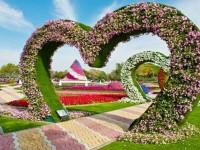 garden-flowers-hd-wallpapers-free-for-desktop