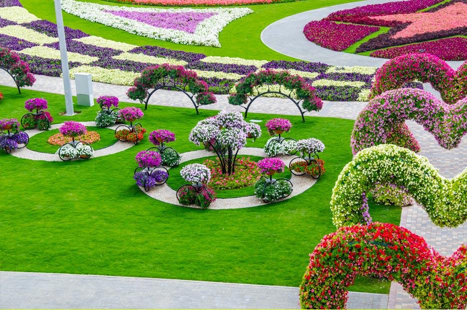 Garden Flowers Hd Wallpapers Free