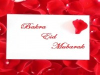 latest-happy-bakra-eid-mubarak-free-hd-wallpapers