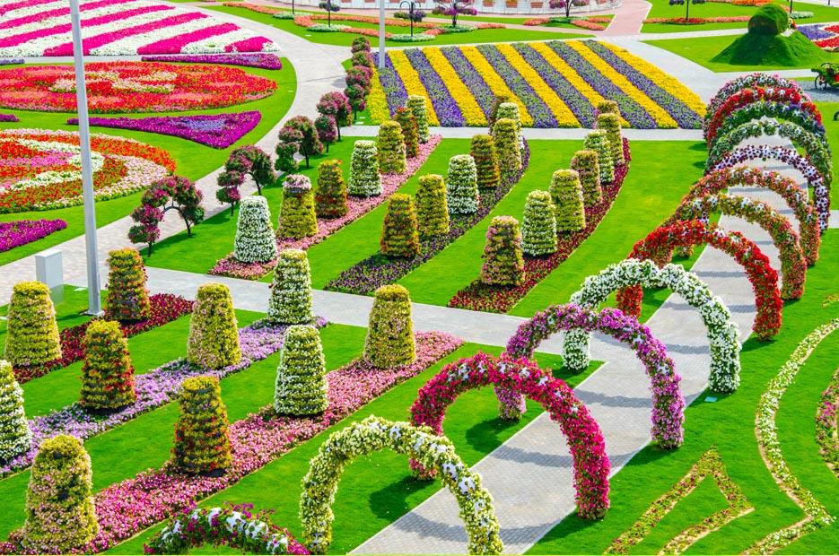 Most Beautiful Flower Garden Free Hd Wallpapers