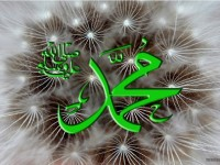 name_of_muhammad_wallpaper-free_hd_f0r_desktop